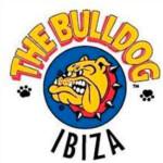 the_bull_dog